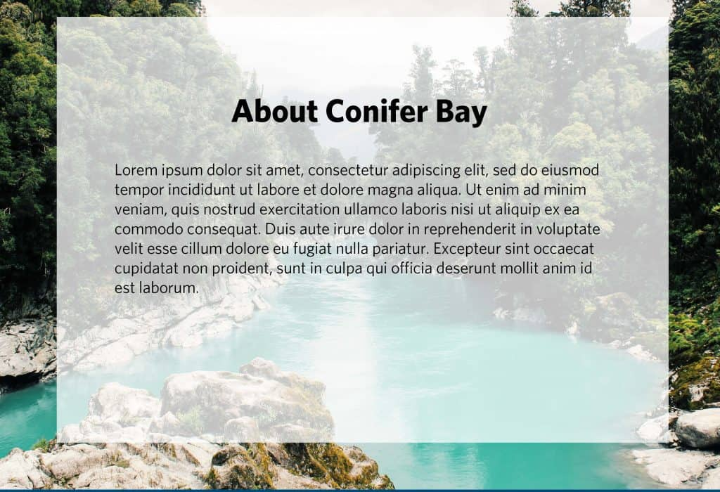 Conifer Bay Quarterly Report Page 13