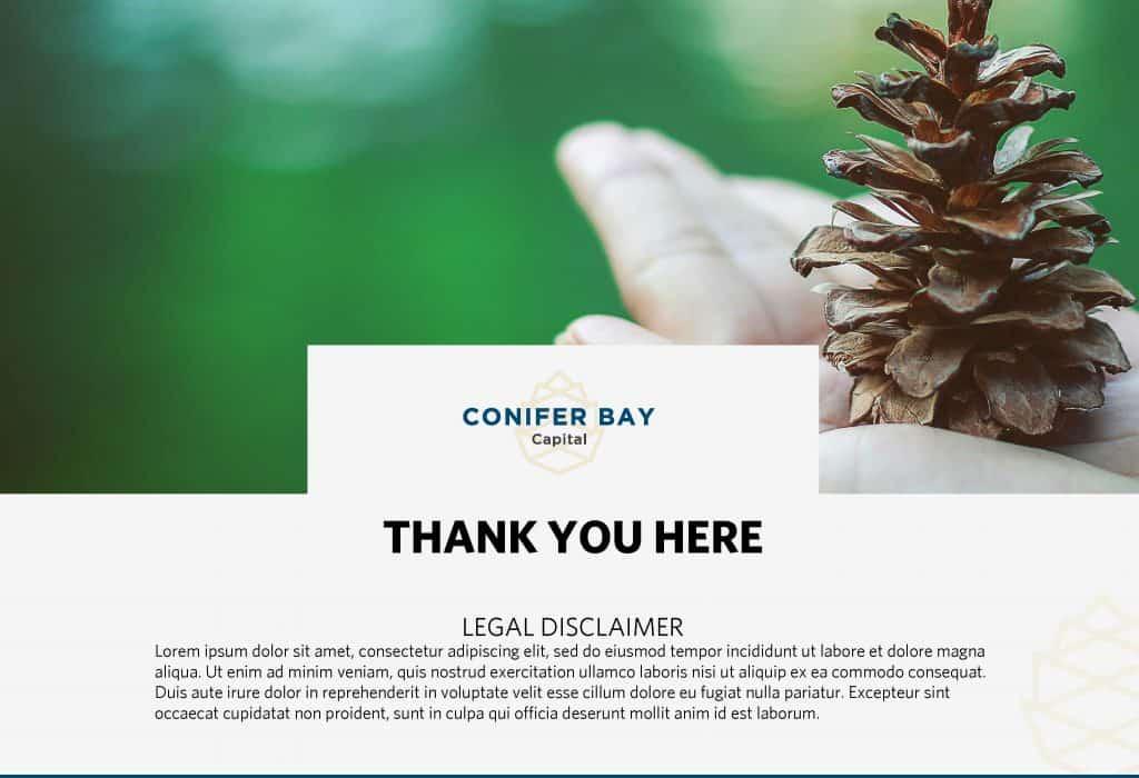 Conifer Bay Quarterly Report